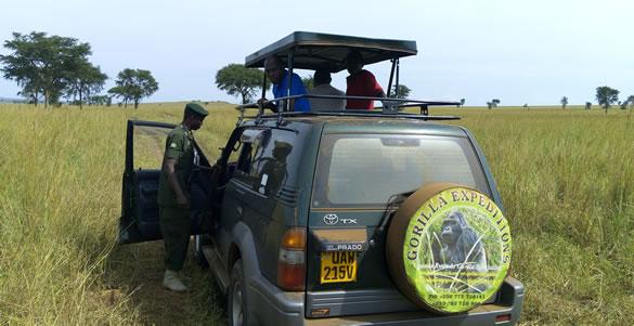 gorilla-expeditions-ltd